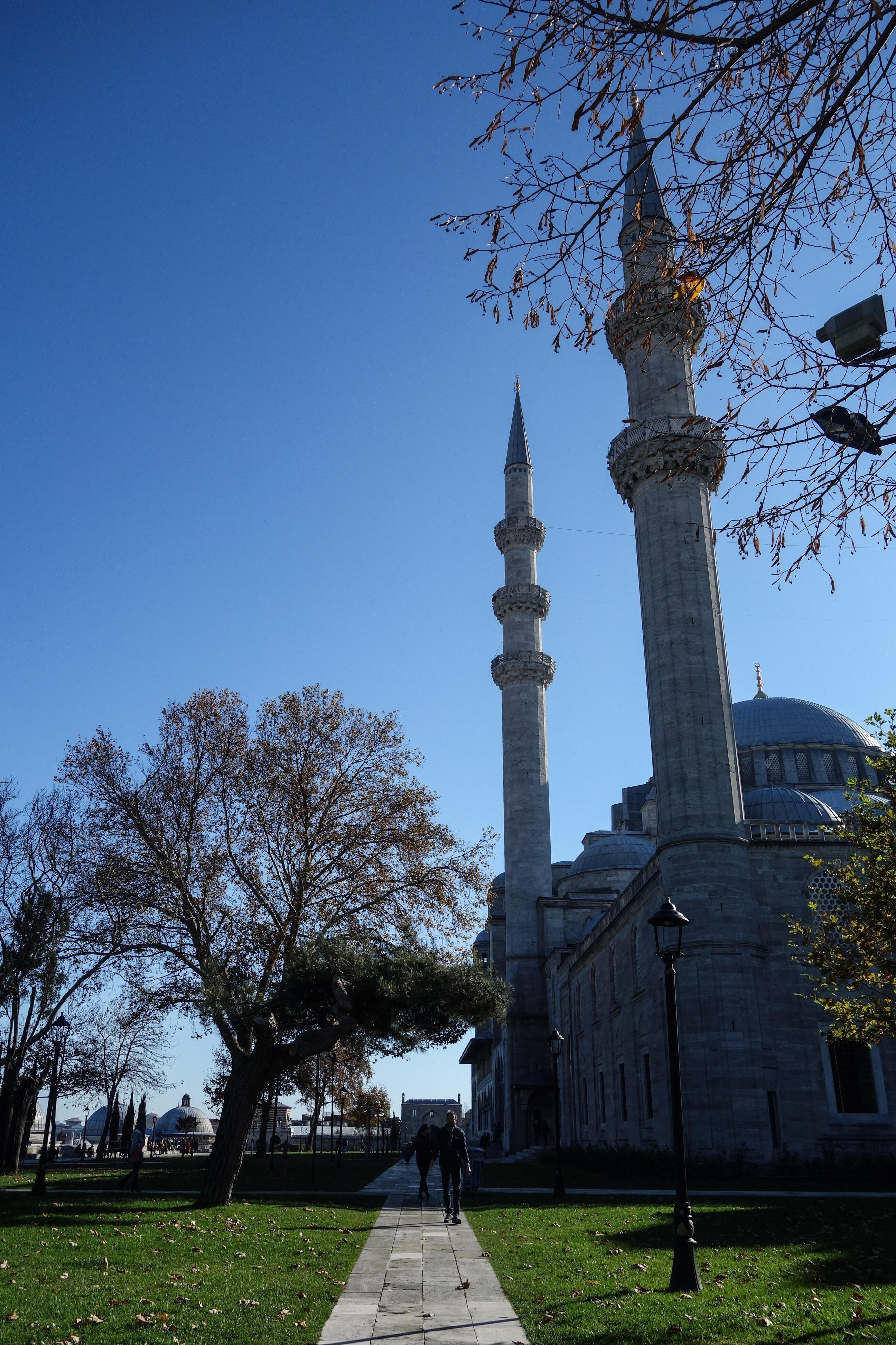 Ancora un particolare della moschea Suleymaniye