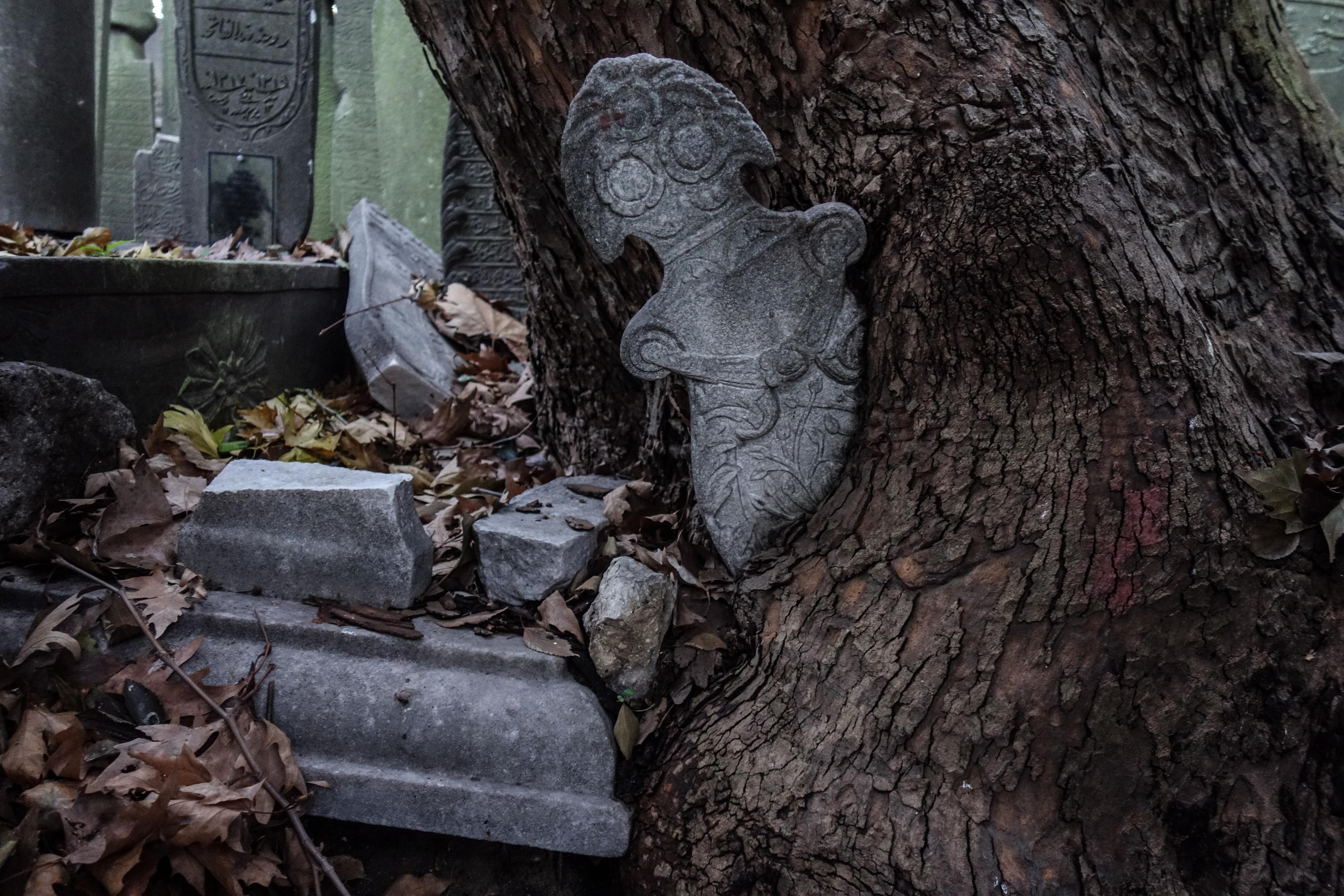 La vita prende il sopravvento sulla morte al cimitero di Eyup