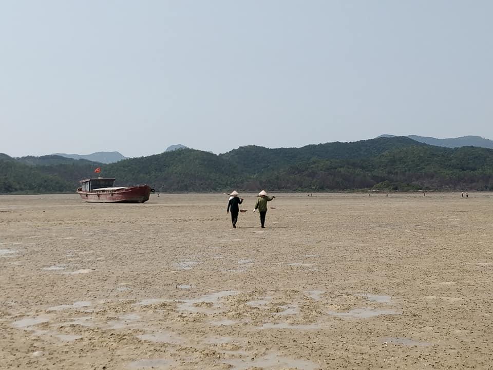 bassa marea nell'isola di Quan Lan