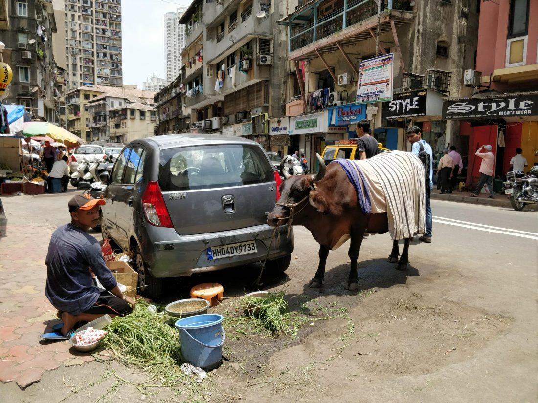 sacralità nelle strade di Mumbai