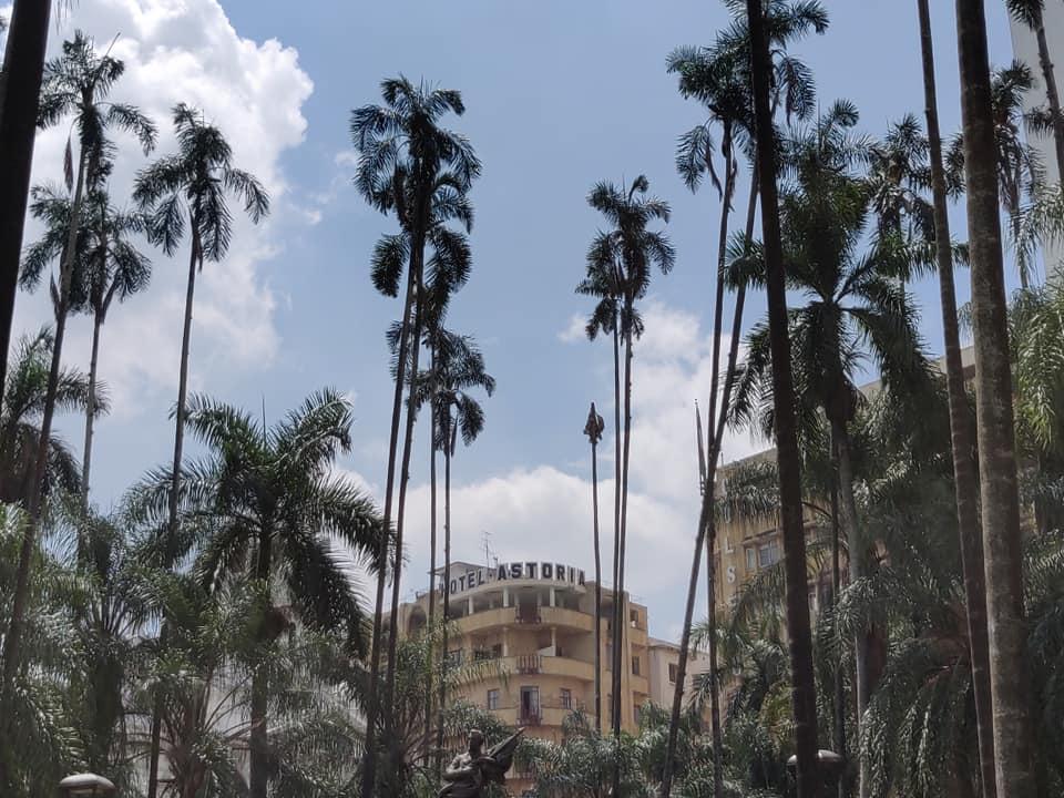 La Plaza De Cayzedo con l'hotel Astoria e le palme da cera, simbolo della Colombia