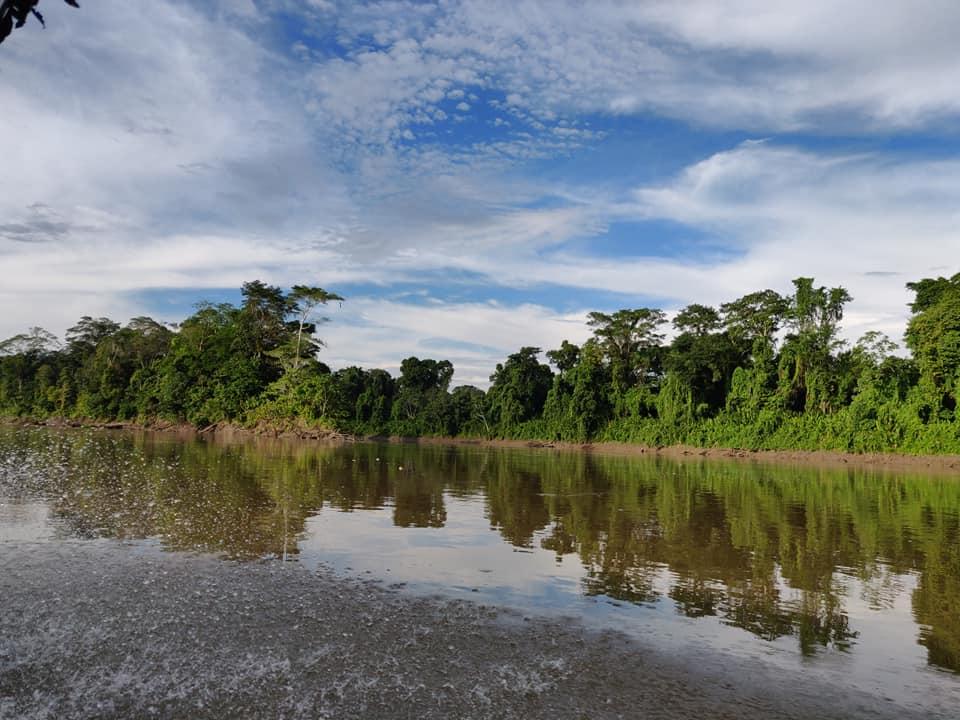 Il fiume napo e la foresta amazzonica di giorno