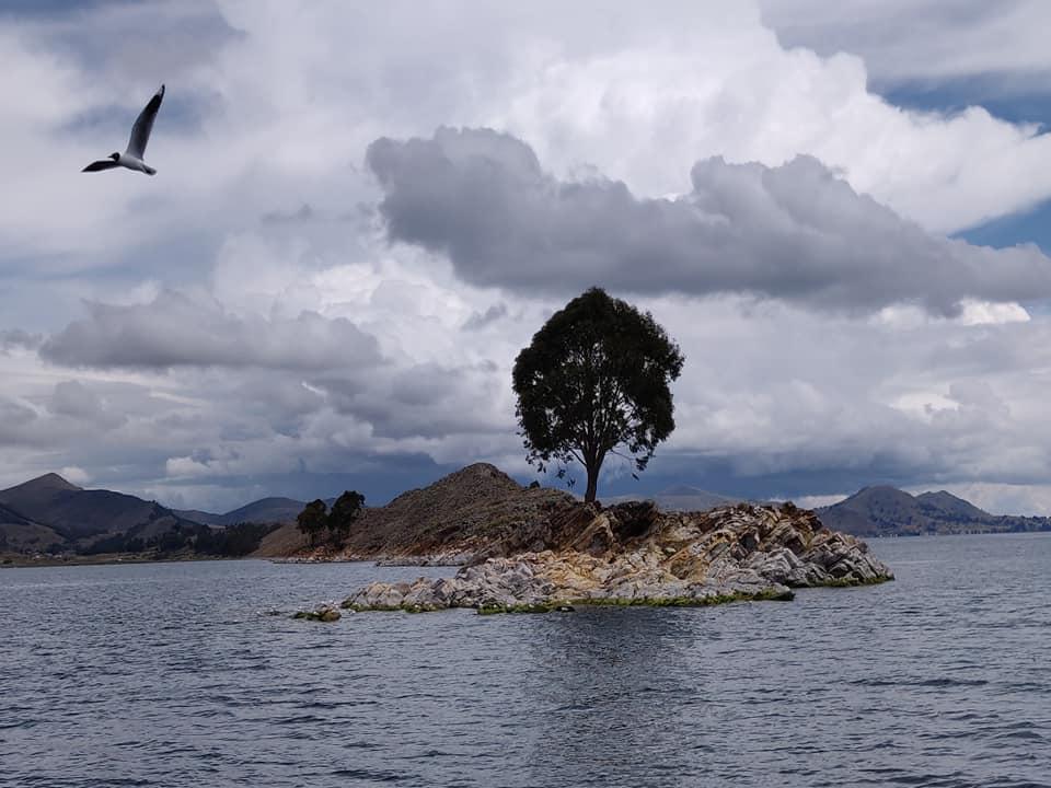 lago titicaca in Bolivia